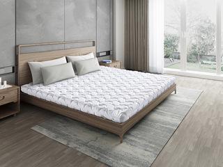 子爵B款14cm薄垫 护脊椎环保棕 天然东南亚进口乳胶垫 1.2*2.0米可定制床垫(包邮 送货到家)
